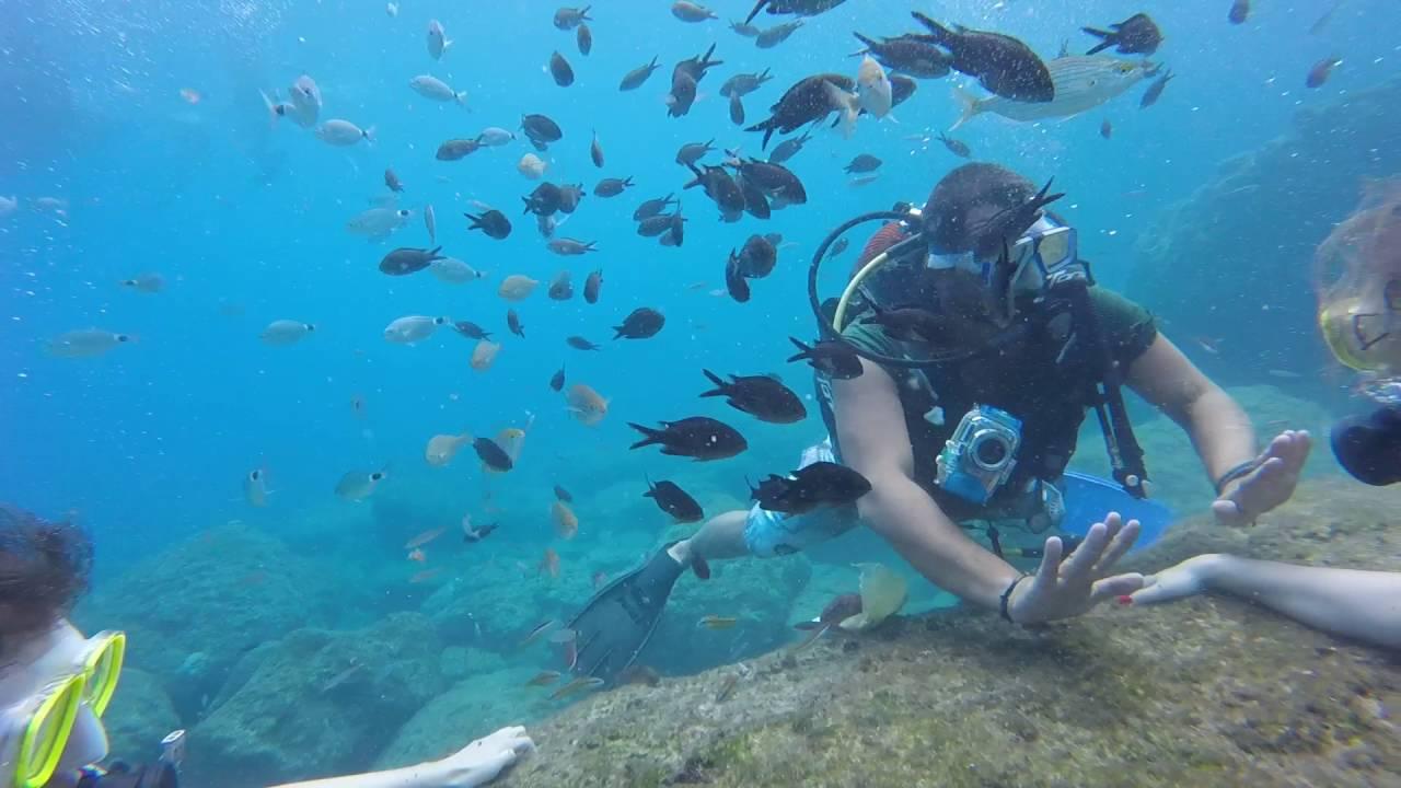 Denizin altına açılan kapı: Scuba Dalış Turu